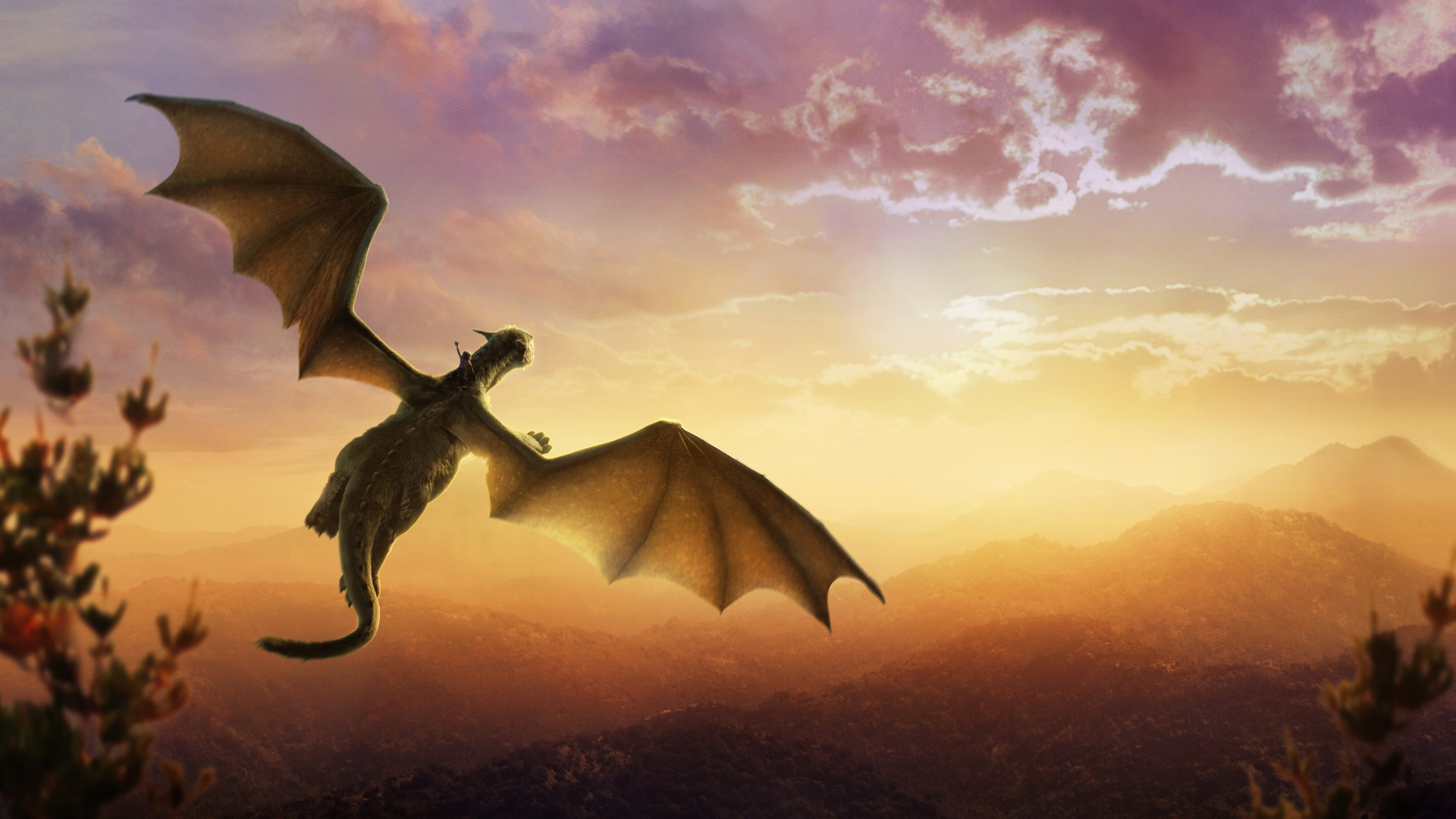 dragon multinational Dragon multinational a new model for global growth john a mathews mathews examines a handful of multinationals from the periphery that have globalized their.