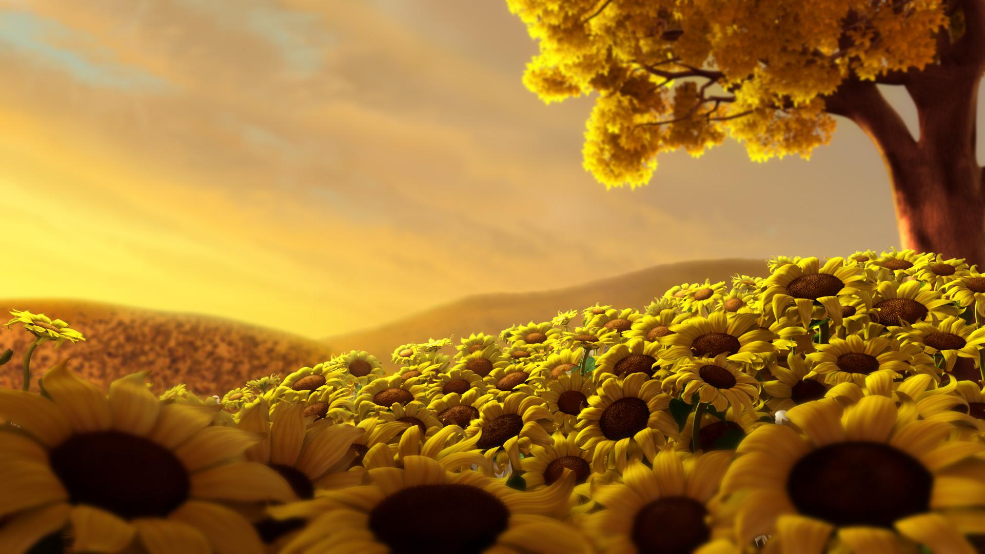 get the best hd wallpapers and background pictures